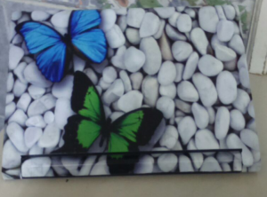 Butterflies and Stones Laptop Skin